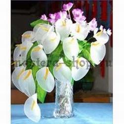 osnovy-cvety-iz-kaprona