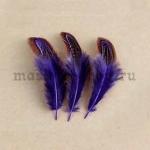 Перо Овал фиолетовое