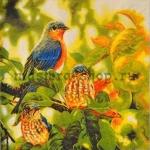Салфетка Птички на яблоне