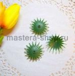 Чашелистик хризантемы. 3,5 см