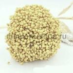 Тычинки средние желтые бледные (2-3 мм)