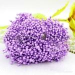 Тычинки средние светло-фиолетовые (2-3 мм)