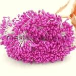 Тычинки средние лиловый (2-3 мм)