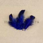 Перо Овал синее