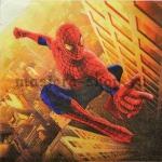 Салфетка Человек-паук