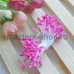 Тычинки средние розово-лиловый (2-3 мм)