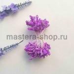 Тычинки зернистые фиолетовые (4 мм)