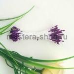 Тычинки малые фиолетовые (1-1,5 мм)