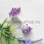 Тычинки средние с блеском Фиолетовые светлые (1,5-2 мм)