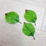 Лист подсолнечника с красным кончиком