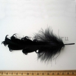 Перо с завитками черное