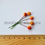 Плоды пиона. Диаметр 8 мм