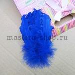 Перо с завитками синее