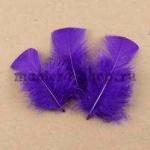 Перо Прямоугольный верх Фиолетовое