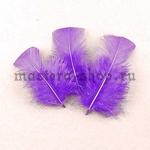 Перо Прямоугольный верх Фиолетовое светлое