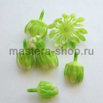 Внутренние лепестки хризантемы Светло-зеленые