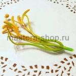 Тычинки и пестик лилии. 12 см. Желтые с зеленым
