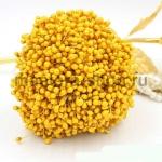 Тычинки средние желтые (2-3 мм)