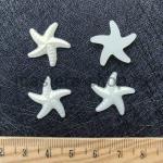 Полубусина Морская Звезда Перламутр 19 мм. 1 шт.