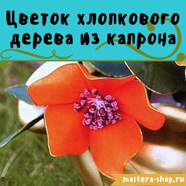 Цветы из капрона своими руками. Как сделать цветы Цветок хлопкового дерева