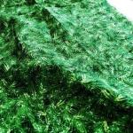 Ткань для печворка и рукоделия Еловые ветки