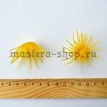 Тычинки водяной лилии. Диаметр 1.8 см