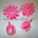 Внутренние лепестки хризантемы розовые