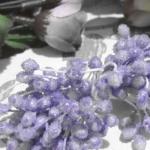 Тычинки большие сахарные Сиреневые светлые (5 мм)