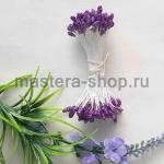 Тычинки средние с блеском Фиолетовые (1,5-2 мм)